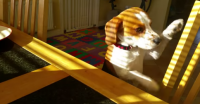 This Cute Beagle Wants To Trade His Toy For Your Breakfast