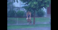 Heroic Neighbor Saves Dog Tied to a Tree During Severe Thunderstorm