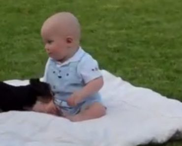 This Adorable Baby Playing With A Tiny Dog On A Big Blanket Will Warm Your Heart